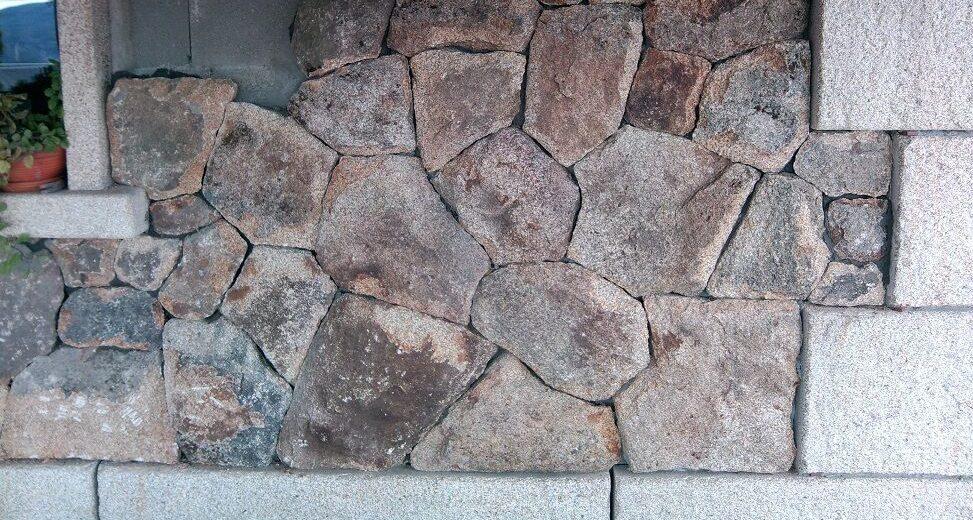 piedra musgo 2