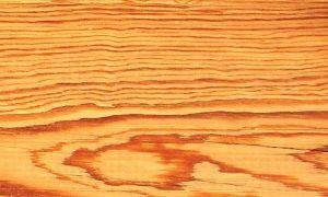 Madera pino amarillo - Maderas Grupo Pazos